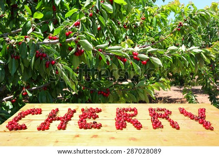 Word CHERRY formed of a ripe red Sweet Cherries on the wood table in a sunny day with blurred cherry orchard in the background. Harvesting  - stock photo