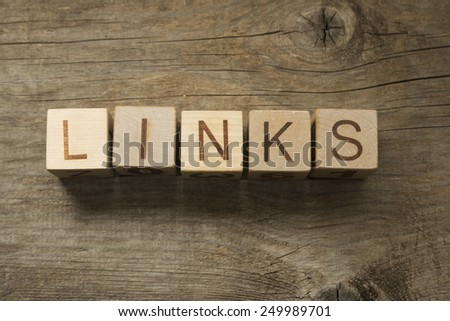 Word Links on a wooden blocks - stock photo