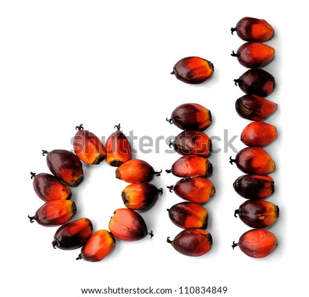 Word oil made from fresh palm oil seeds isolated on white background, selective focus. - stock photo