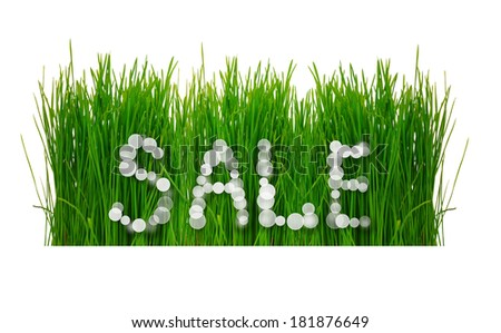 Word Sale with fresh grass isolated on white backgrou?d - stock photo