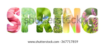 Word Spring with colorful nature images inside the letters, fresh grass and flowers photos, on white background, horizontal - stock photo