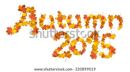 Words Autumn 2015 made of bright maple leaves on white background.