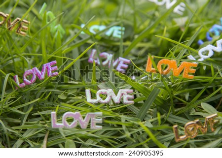 Words of love in garden background  - stock photo
