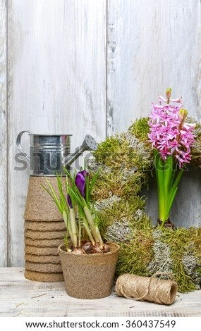 Work in spring garden: plants and tools - stock photo