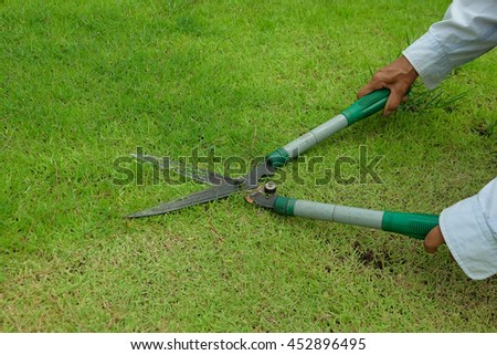worker cutting grass with scissors in the lawn