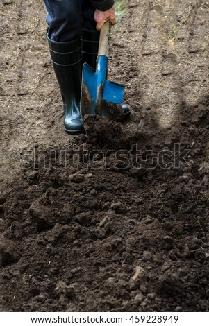 Worker digs the black soil with shovel in the vegetable garden, man loosens dirt in the farmland, agriculture and tough work concept, vertical view