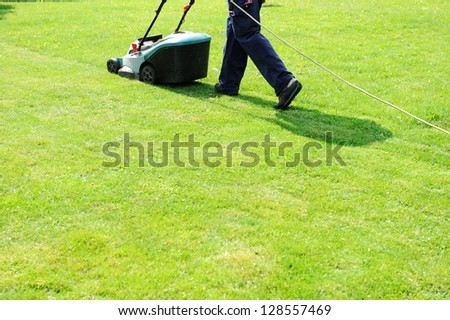 Worker moves with lawnmower and mows green grass