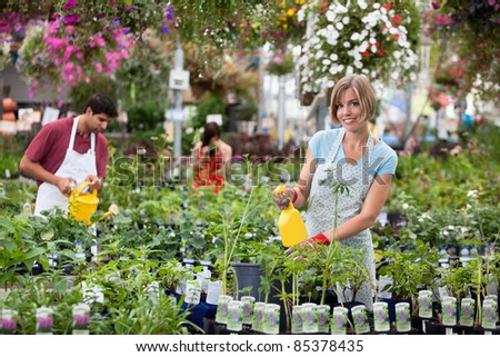 Workers watering the plants at greenhouse