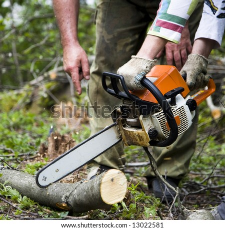 Workers With Chainsaw In The Forest - stock photo