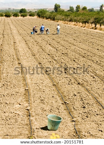 workers working in the fields  (bucket) - stock photo
