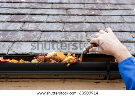 Working Hands Clearing Autumn Leaves from Gutter with Trowel - stock photo