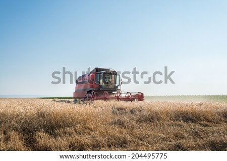 Working Harvesting Combine in the Field of Wheat - stock photo
