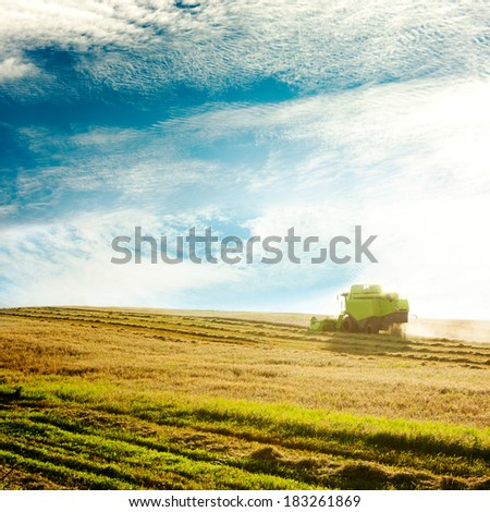 Working Harvesting Combine in the Field of Wheat. Agriculture Concept. Copy Space. Toned Photo. - stock photo
