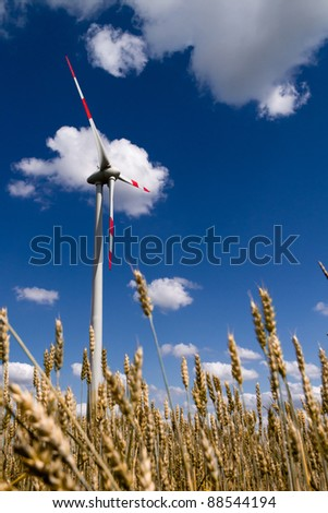Working wind turbine against the blue sky, and wheat