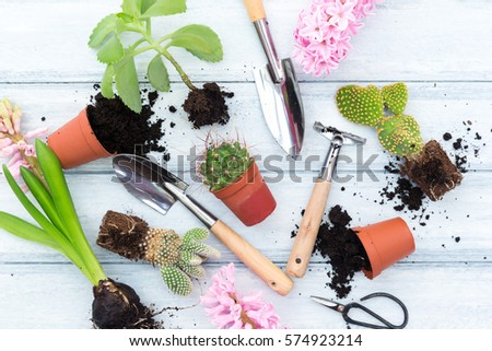 Workspace planting spring flowers garden tools stock photo royalty workspace planting spring flowers garden tools stock photo royalty free 574923214 shutterstock mightylinksfo Image collections