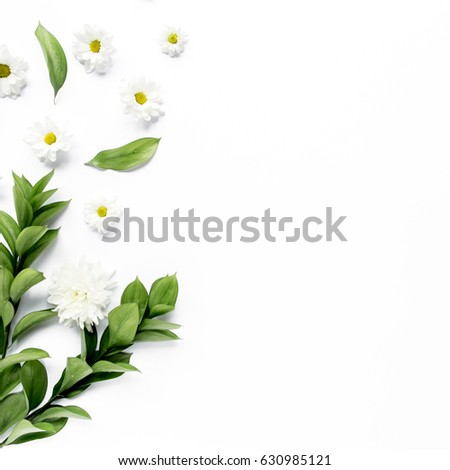 workspace with white flower chrysanthemum and chamomile branches and leaves isolated on white background. lay flat, top view
