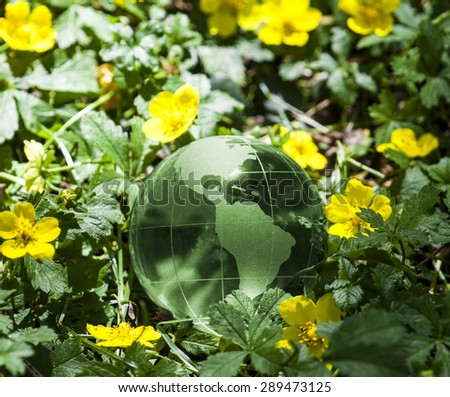 World environmental concept. Crystal globe in green grass with yellow flowers. Visible are the continents the Americas. - stock photo