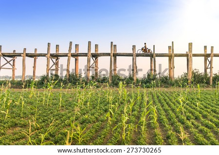 World famous U-bein wooden bridge near Mandalay in Myanmar Burma - Concept of rural everyday life in emerging country - Person silhouette is completely modified - Sunshine is part of composition - stock photo