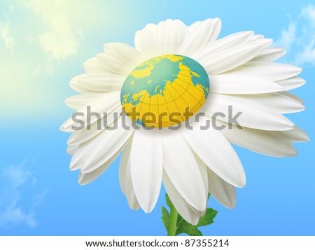 World Flower - stock photo