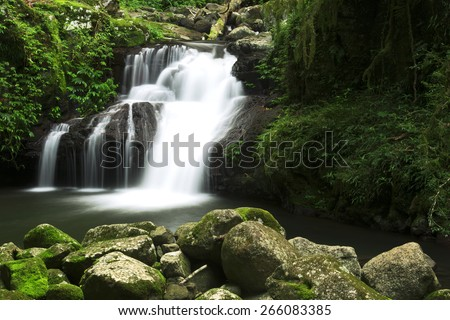 World heritage area Lamington National Park. Waterfall in the gold coast hinterlands on the NSW border. - stock photo