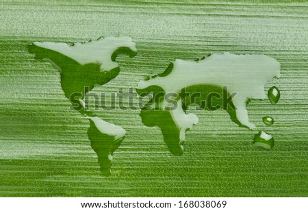 World map made out of water on a leaf - stock photo