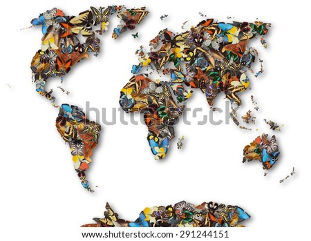 World map of butterflies. - stock photo