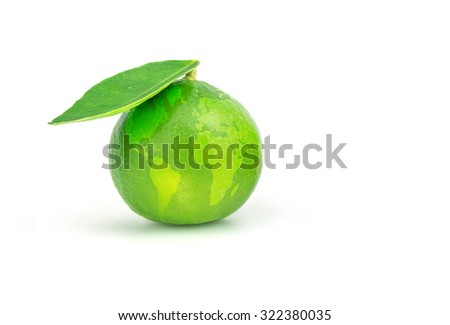 world map on the lime, Environment concept, glass globe. - stock photo