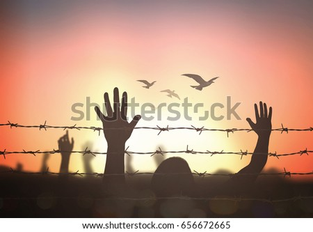 stock-photo-world-refugee-day-concept-silhouette-human-hands-raising-and-barbed-wire-on-sunset-background-656672665.jpg