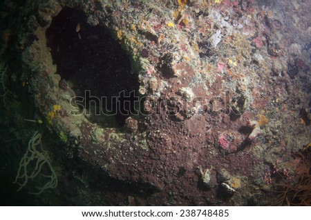 World war II shipwreck diving in Coron , Palawan, Philippines.