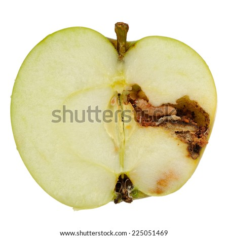 Worm (Apple Maggot Larva) Eating Apple Isolated on White Background - stock photo