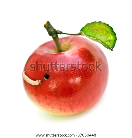 worm in apple isolated on white - stock photo