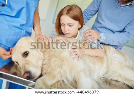 Worried about pet - stock photo