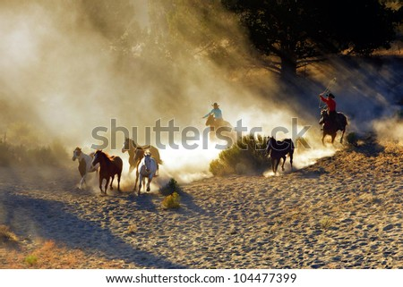 Wranglers chasing wild horses in early morning light with dust flying everywhere