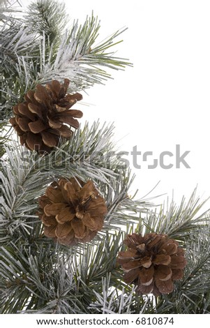 Wreath branch with pinecones - stock photo