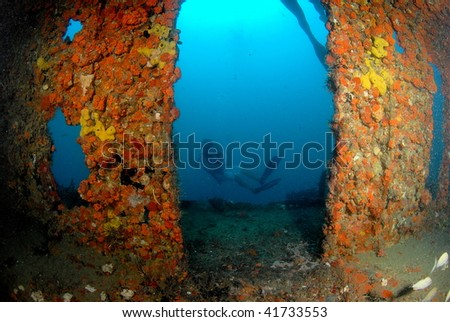 wreck dive and diver south Florida - stock photo