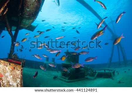 Wreck Diving in Grand Cayman - stock photo
