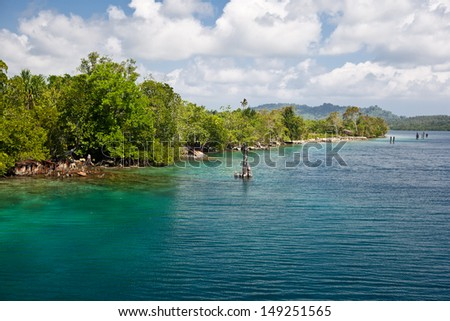 Wreckage from WWII lines White Beach in the Solomon Islands.  This area is found within the Coral Triangle and is high biological diversity. - stock photo