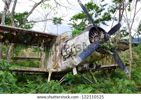 Wrecked airplane in jungle