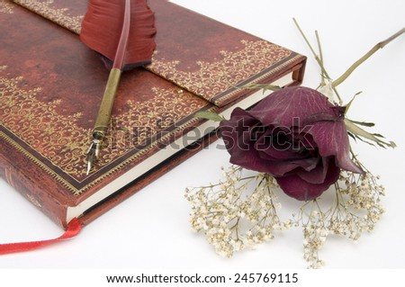 Writer's Book with Fountain Pen and Dry Rose - stock photo