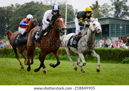 WROCLAW, POLAND - SEPTEMBER 21; 2014: The race for - three year old arabian horse in a Racecourse WTWK Partynice. - stock photo