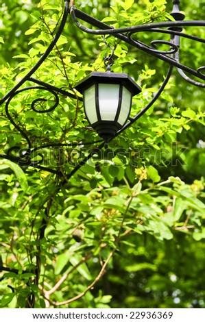 Wrought iron arbor with lantern in lush green garden - stock photo