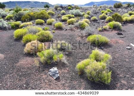 Wupatki National Monument in Arizona, USA - stock photo