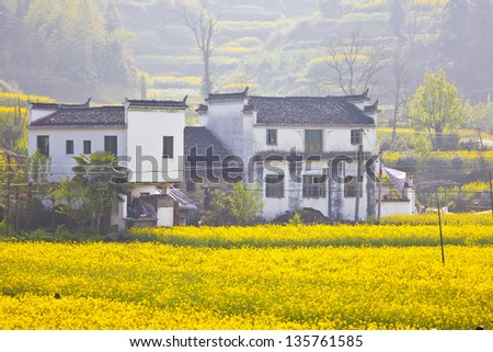 Wuyuan landscape in China at spring - stock photo