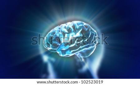 X-ray Brain to represent the theme biology, intelligent,technology - stock photo