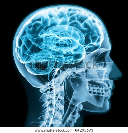X-ray close up with brain and skull concept,Part of a medical series - stock photo