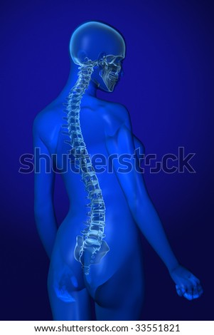 X-ray female anatomy over a blue background - stock photo