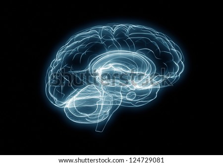 X-ray human brain - stock photo
