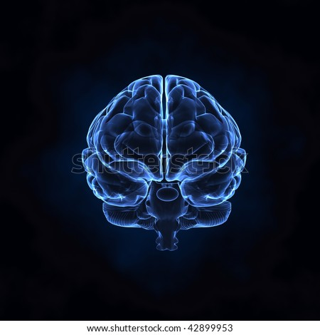 X- ray human brain front view - stock photo