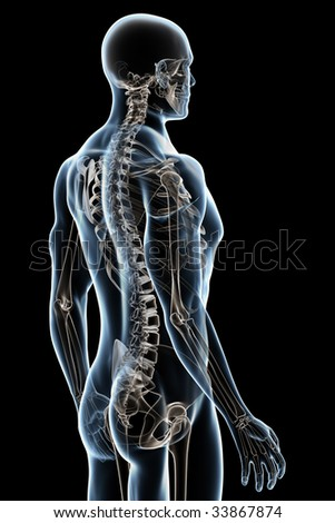 X-ray male anatomy over a black background