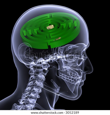 X-Ray of a male skeleton with a hamster running through a maze in his head for the concept of problem solving. Isolated on a black background - stock photo